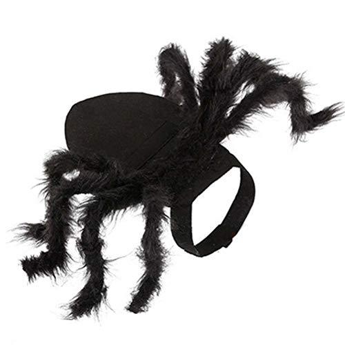 POPETPOP Halloween lustige Haustier Hund Katze Kleidung Verklärung Spinne Welpe Plüsch Cosplay Kostüm Halloween Party Geschenk (Spinne Kostüm Katze)