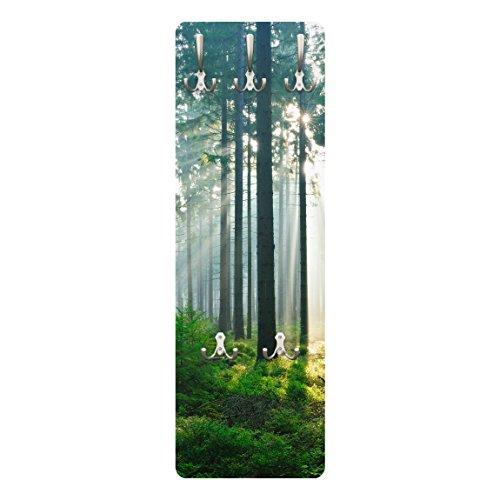 BIlderwelten 78830 Wandgarderobe Enlightened Forest | Design Garderobe Garderobenpaneel Kleiderhaken Flurgarderobe Hakenleiste Holz Standgarderobe Hängegarderobe | 139x46cm