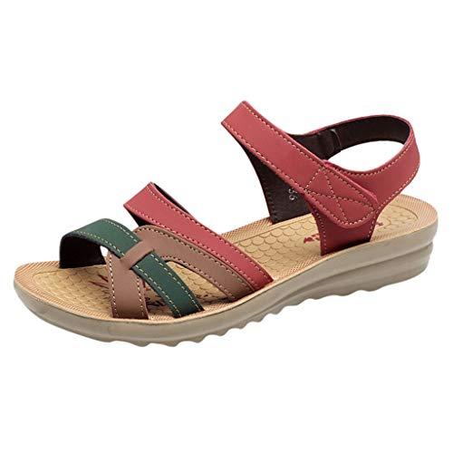 EUCoo Sandales à la Cheville Plates pour Femmes avec de la Taille Gladiator Thong Flip Flop Sandals Mayari(Rouge,40)