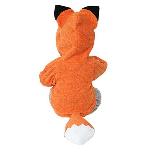 Kleinkind Mädchen Kostüm Löwen - OVERDOSE Kind-Jungen-Mädchen-Karikatur-Entwurf Fox Hoodie-Jacken-Outwear-Mäntel 0.5-3 Jahre alt (1-2Jahre alt, A-Orange)