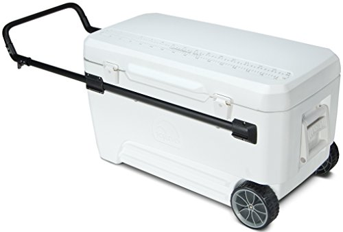 igloo-glide-beverage-cooler-110-quart