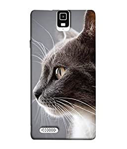 Fuson Designer Back Case Cover for Infocus M330 (cat Fluffy Cat Pet cat Cute CAt Grey Cat)