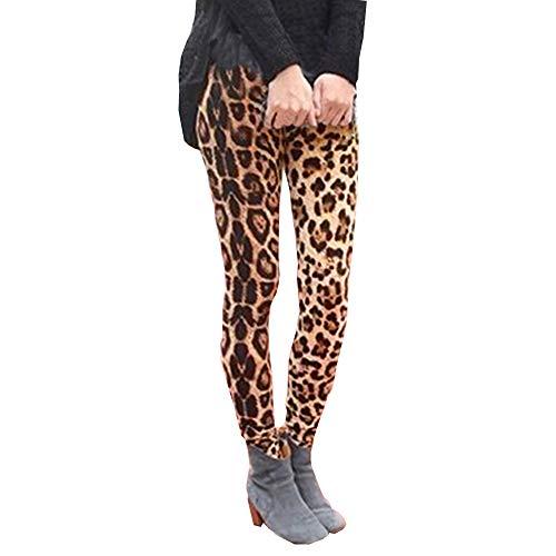 Pantalones Pinzas Leggins Largo para Mujer Invierno Otoño Tallas Grandes PAOLIAN Pantalón Skinny Cintura Alta Elásticos Estampado Leopardo Vestir Flacos Pantalones Casual Ajustado