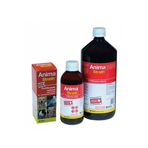 anima-strath-supplement-fortifiant-et-reconstituant-100-ml