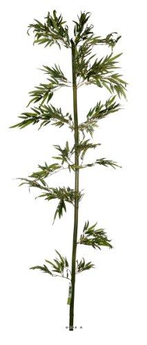 Artif-deco - Canne bambou naturelle h 240 cm 720 feuilles