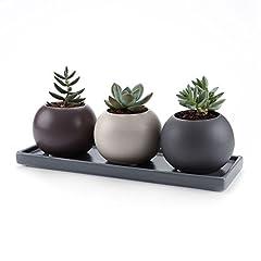 Idea Regalo - T4U 7.5CM set of 3 Design Cameo Double Layer Hollow Ceramica Vaso di Fiori Pianta Succulente Cactus Vaso di Fiori giardino i vasi di fiori vasi di piante.