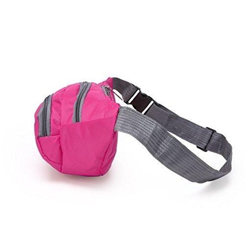 Unisex Gürteltasche Hüfttasche Bauchtasche Herren Damen - TD003 (TD003-Pink) TD003-Pink