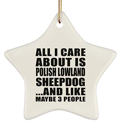 Designsify All I Care About is Polish Lowland Sheepdog - Star Ornament Stern Weihnachtsbaumschmuck aus Keramik Weihnachten - Geschenk zum Geburtstag Jahrestag Muttertag Vatertag Ostern - Polish Pottery Christmas Ornament