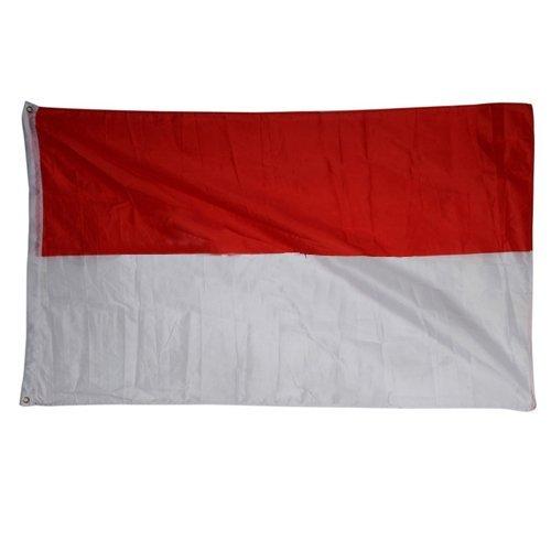 SODIAL (R) Grosse 90x150cm 5 X 3FT Nationale Foerderer Sports Olympiade Flaggen mit Tuelle - polnische Flagge (Polnische Flagge)