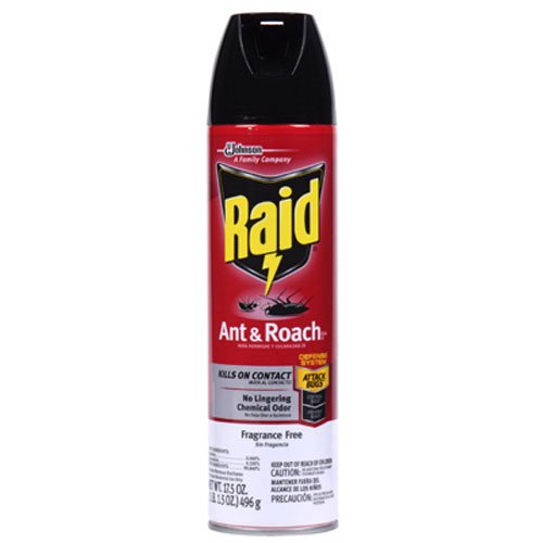 Raid Ant & Roach Killer Insecticide Spray-Fragrance Free - 17.5 oz