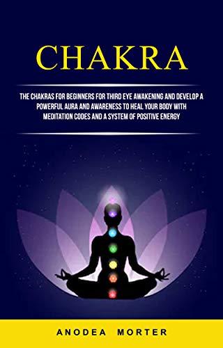 Chakra: The Chakras For Beginners For Third Eye Awakening ...