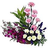 Florazone Triple Elegance Basket Arrangement Carnation, Roses, Orchids, Multicolour