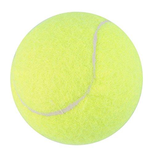 Demarkt Tennisbälle –Tennis Balls Tennis Practice Ball – Ideal for Tennis Playing and Teaching, Practice Training Pets Gelb