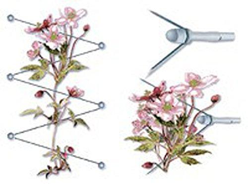 PEGANE Espalier modulable pour Plantes grimpantes Comprenant 6 Doubles vis et 10 m de Cable