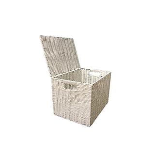 ARPAN Laundry Resin Woven Chest Trunk Hamper Kids Toy Storage Box Basket, White, Medium-W37xD26x26cms