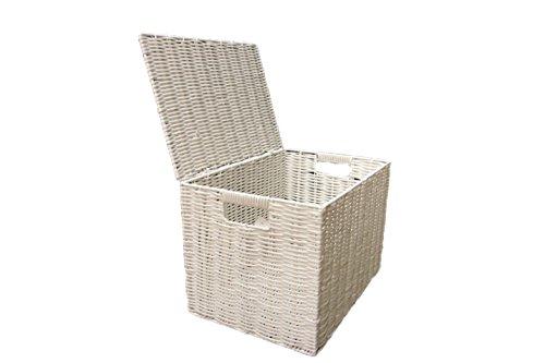 Arpan Medium Paper Rope Basket Storage Chest Trunk