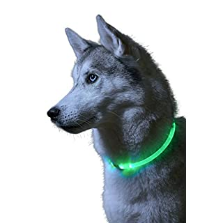 Auraglow Super Bright LED Light up Dog Collar High Visibility Flashing Safety Pet Leash - Green