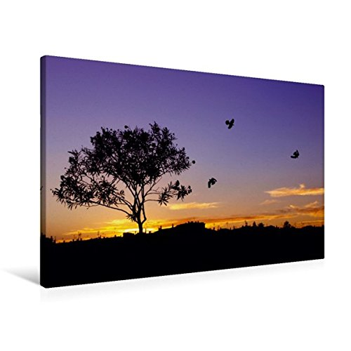 Preisvergleich Produktbild Premium Textil-Leinwand 90 cm x 60 cm quer, Portugal - Castro Marim - Sonnenuntergang | Wandbild, Bild auf Keilrahmen, Fertigbild auf echter Leinwand, Leinwanddruck (CALVENDO Orte)