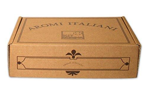 kit-semina-aromi-italiani-bauletto-con-2-mini-serre-per-germinazione-e-4-buste-di-semi