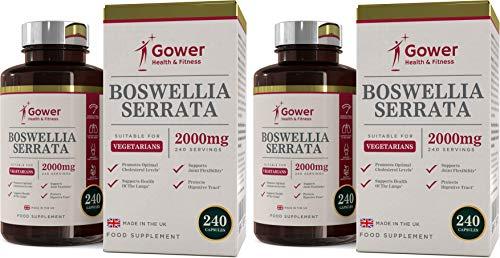Boswellia Serrata Extrakt (Boswellia serrata (Weihrauch) Extrakt 5:1 (entspricht 2000 mg) | 365 Kapseln | STARK ENTZÜNDUNGSHEMMEND | Muskel- & Gelenkgesundheit | 4 Monate Vorrat | (2 Flaschen (480 Kapseln)))