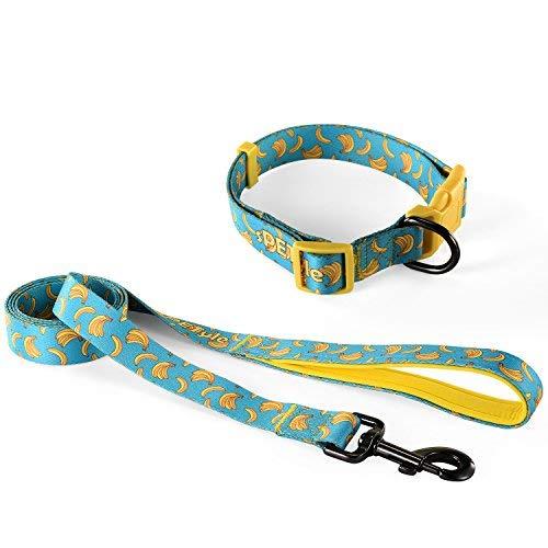 sPETyle Collar Básico y Conjunto de Correas de mascora para Gatos y...