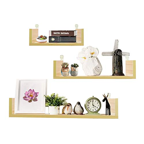 Jerry & Maggie - Wand aufhängen Regalen Home Decor Wand Rack Wohnzimmer Display Pflanzen mit Wandmontage Design - Wand Regal Home Decor