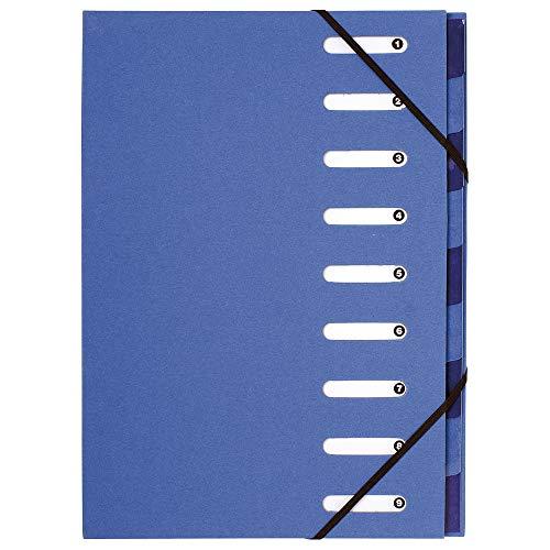 Exacompta 52982E Ordnungsmappe (Recycling-PP, Forever, Gummizug, dehnbarer Harmonika-Rücken, 9 Fächer) 1 Stück Farbe Hellblau