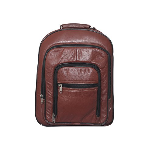 ALTILA 17.3 inch Laptop Backpack (Tan Colour)