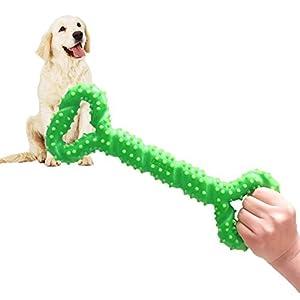 Robustes Hundespielzeug 13 Inch Knochen geformt Kauspielzeug aus Hartgummi mit Konvexes Design stark interaktives Spielzeug für große kleine Hunde, Zähne reinigen und Zahnfleisch massieren  EIGENSCHAFTEN - Dieses Hunde Kauspielzeug ist aus TPR, strap...