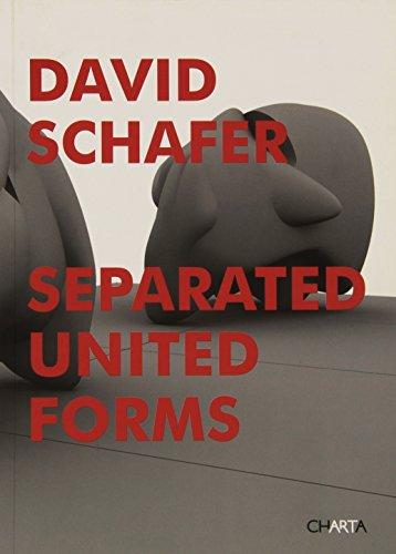 Separated united forms. Ediz. illustrata por David Schafer