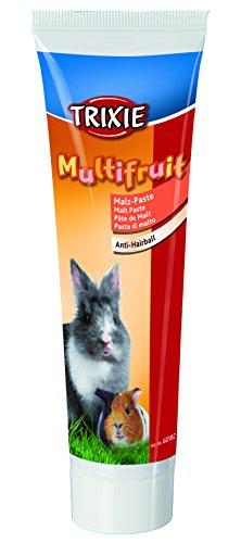 Malz-Paste für Kaninchen und Meerschweinchen, Multifruit, 100 g -
