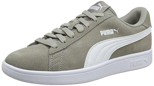 Puma Unisex-Erwachsene Smash v2 Sneaker, Grau (Elephant Skin White), 41 EU