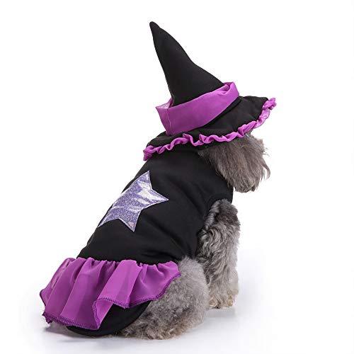 Disfraz de Bruja de Halloween para Perros