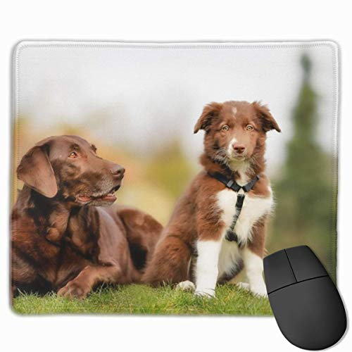 Labrador Border Collie Brown Dog Puppy Gaming Mouse Pad Non-Slip Rubber Mousepad for Home and Office Mouse mat 9.8