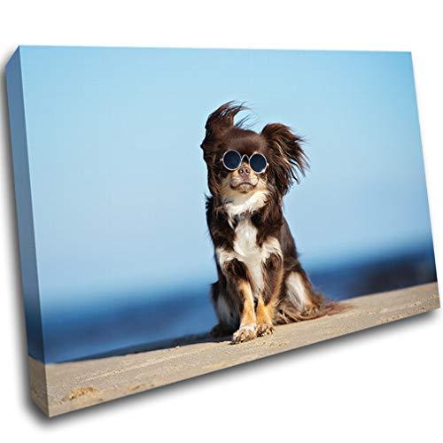 LoveSticker CH1383 Leinwandbild Chihuahua Hund Strand Sonnenbrille, 8x12inch (20x30cm)