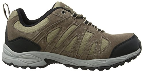 Hi-Tec Alto Ii Low Waterproof, Chaussures de Randonnée Basses homme Marron (Smokey Brown/taupe/gold)