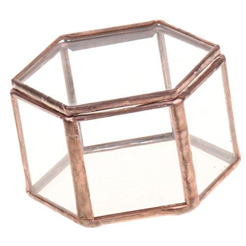 IPOTCH Hexagonal Caja de Cristal Transparente para Planta/Joya / Peque