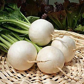 Las Semillas de germinación: 100 - Semillas: Polar F1 híbrido de nabo -  Semillas de maduración temprana y Blanco Puro !! ¡¡¡¡Delicioso!!!!