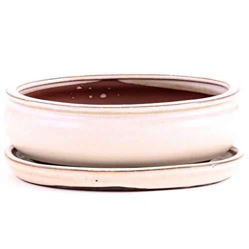 Bonsai - Schale oval 20 x 16 x 8 cm, Creme, mit Untersetzer 23124