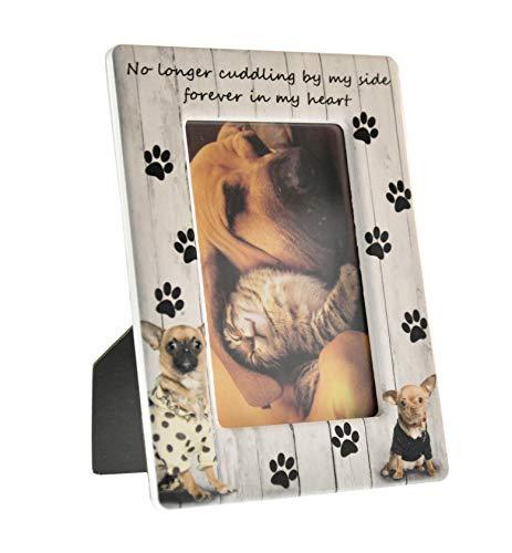 Home-X Bilderrahmen für Haustiere, 10 x 15 cm, Haus- und Bürodekoration für Katzenliebhaber