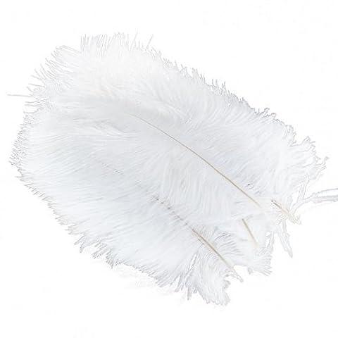 Plume Blanche - Gleader 10 Pieces Blanc Naturel Plume d'autruche