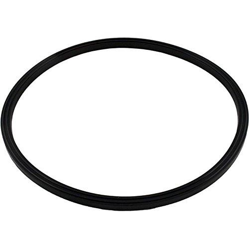 Jandy Zodiac R0487400 O-Ring-Ersatz JS-Serie Sandfilter (Jandy O-ring)