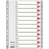 Esselte Índices numéricos de plástico, PP, Tamaño A4, Tipo 1-12, Gama STD, Gris, 100106