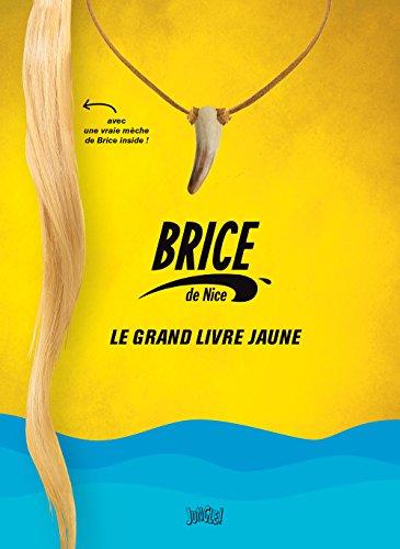 Brice de Nice, le grand livre jaune