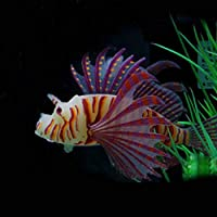 Lorsoul Falso Acuario de Peces Paisaje Simulación Peces Tropicales Glow Lion Fish Tank Ornamental