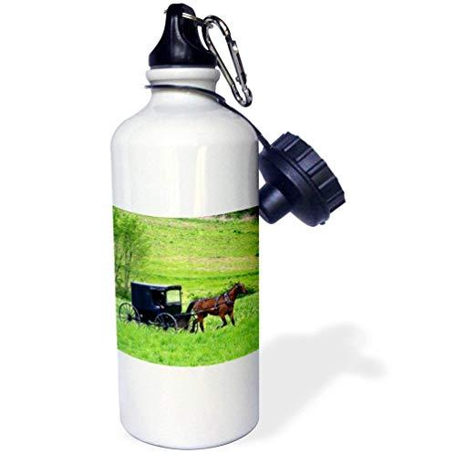 qidushop Amish Farm Kinder-Thermobecher mit Pferdemotiv in der Nähe von Berlin, Ohio, Edelstahl, isolierend, für Reisen, 535 ml