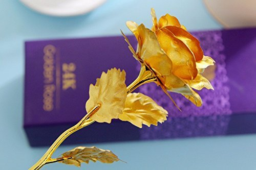 Indigo Creatives 24K Gold Rose 10 Inch With Gift Box - Best Gift For Loved One on Valentine, Father / Mother Day, Anniversary, Birthday With Gift Box