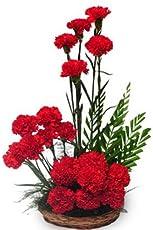 Floralbay Basket Arrangement of Carnation Fresh Flowers (Bunch Of 18)