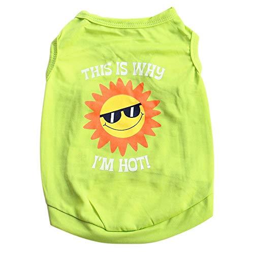 YWLINK Haustier Sonne Muster Sommer Weste-T-Shirt Kleiner Hund Katze Süß Pet Kleidung(Grün,M)