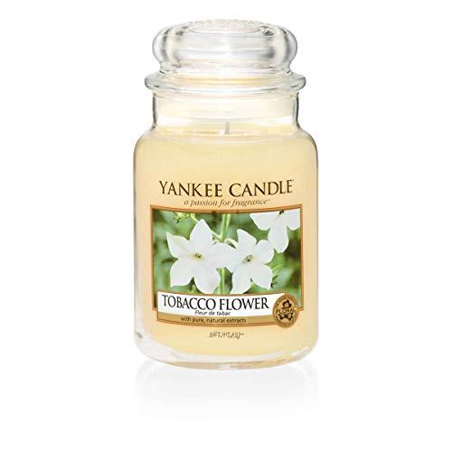 Yankee Candle Tobacco Flower Glaskerze, gelb, groß -